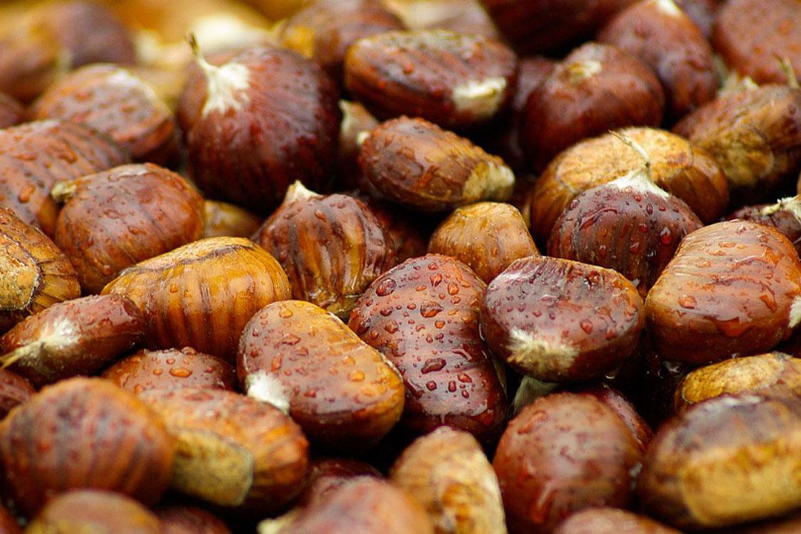 Porque é que comemos castanhas no dia de São Martinho?