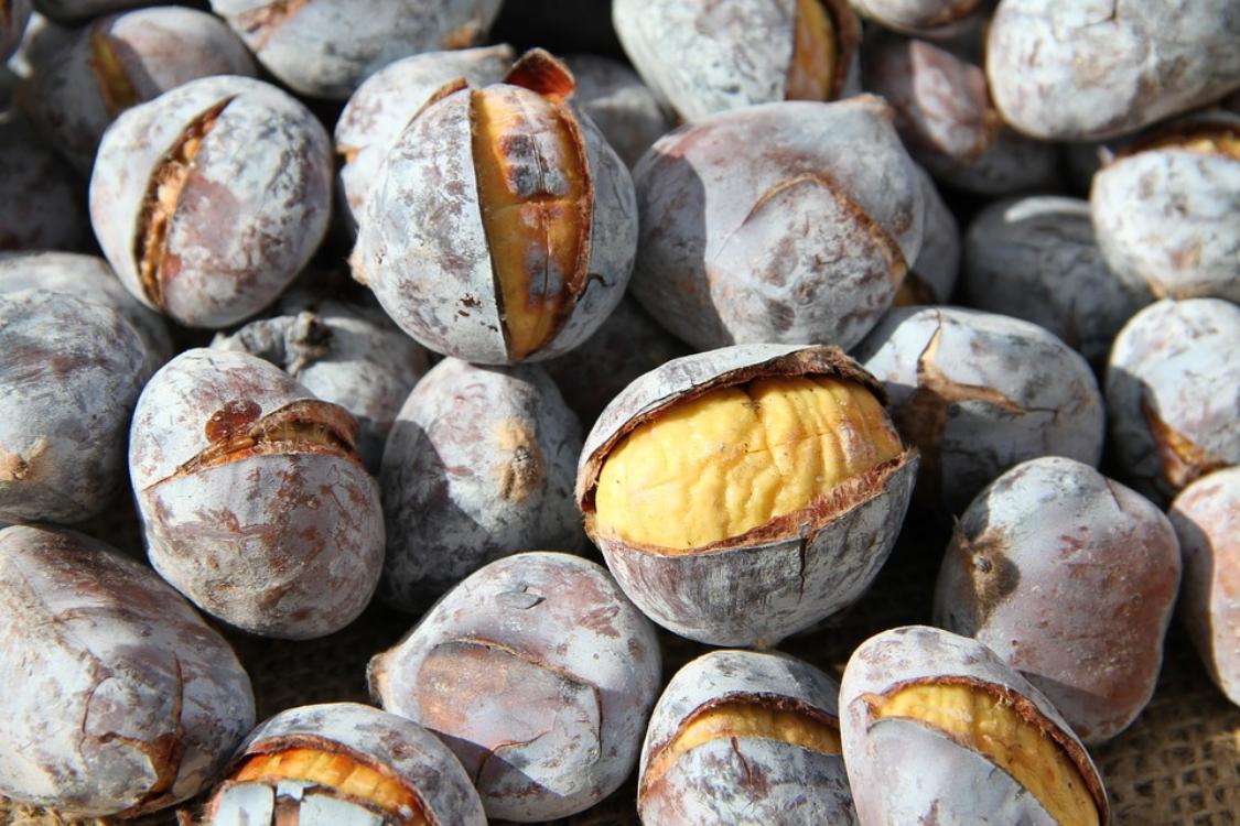 As castanhas são essenciais na dieta, inclusive para quem quer perder peso!