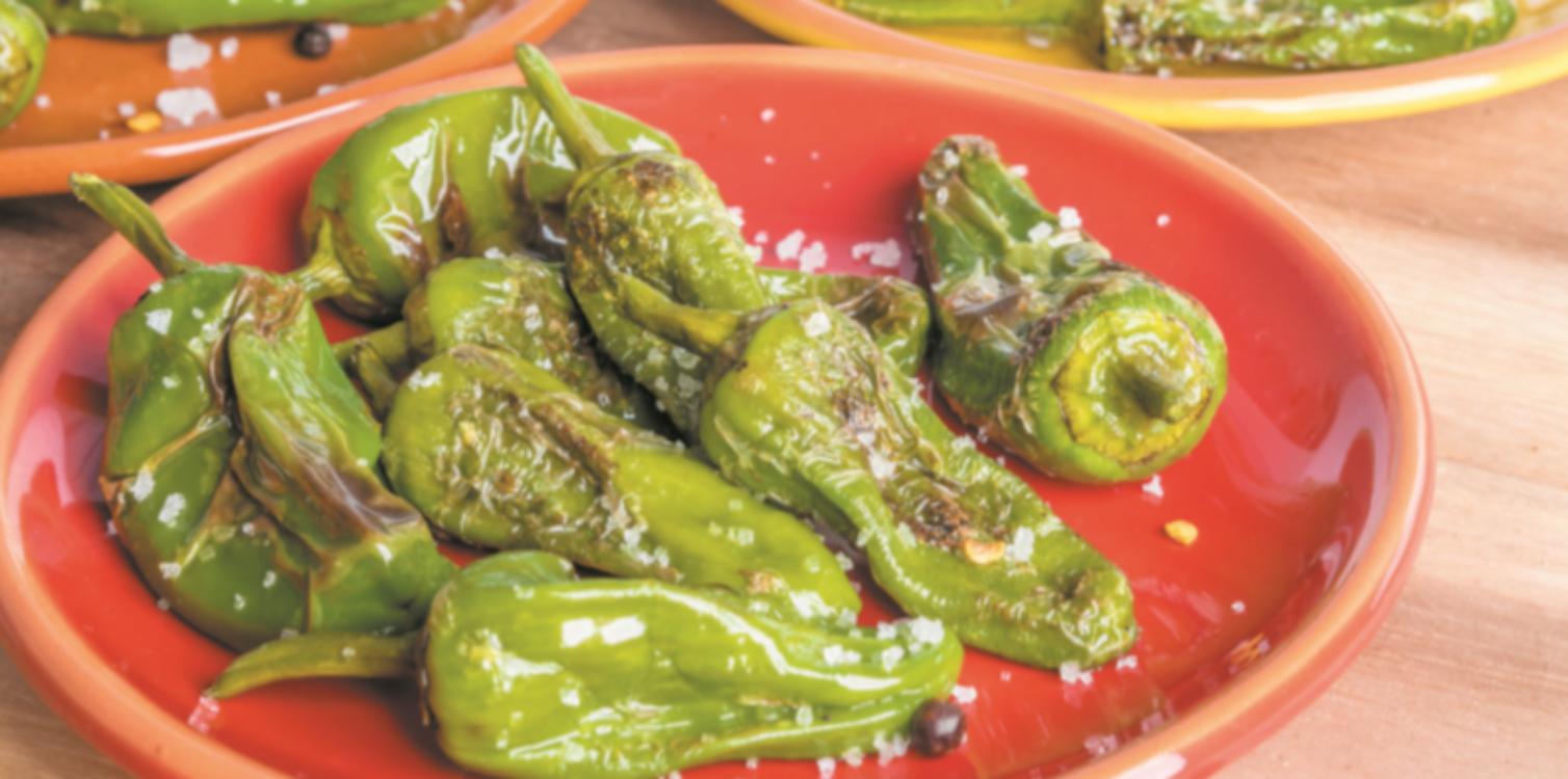Pimentos padrón: um petisco de preparação rápida… e que é delicioso!