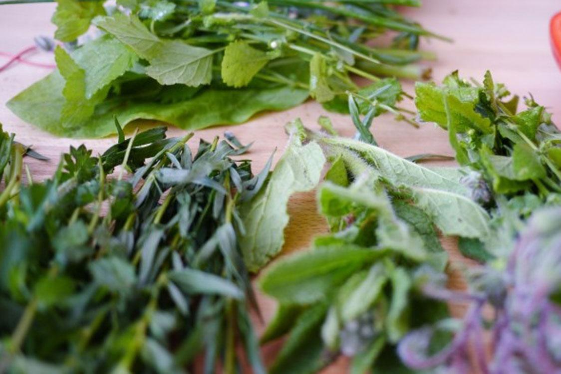 Acompanhe as refeições com uma salada de ervas