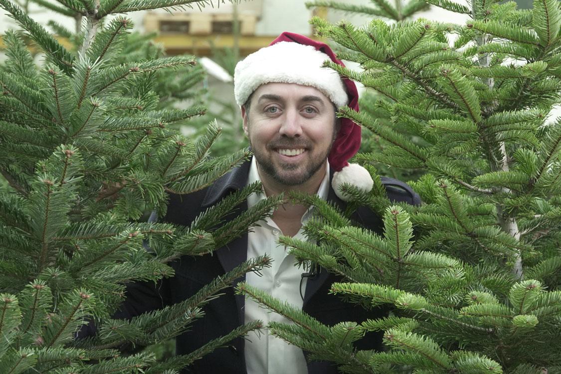 Este ano, a minha árvore de Natal é especial!