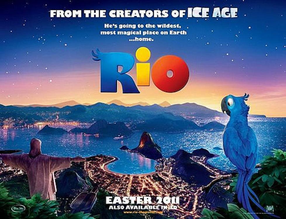 """Pássaro que inspirou o filme """"Rio"""" corre risco de extinção!"""