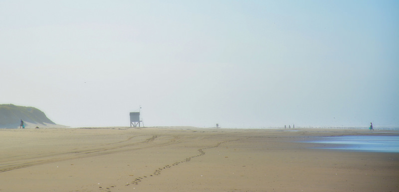 Holanda tem uma ilha fantástica com praia e mesmo ao pé de Amesterdão!