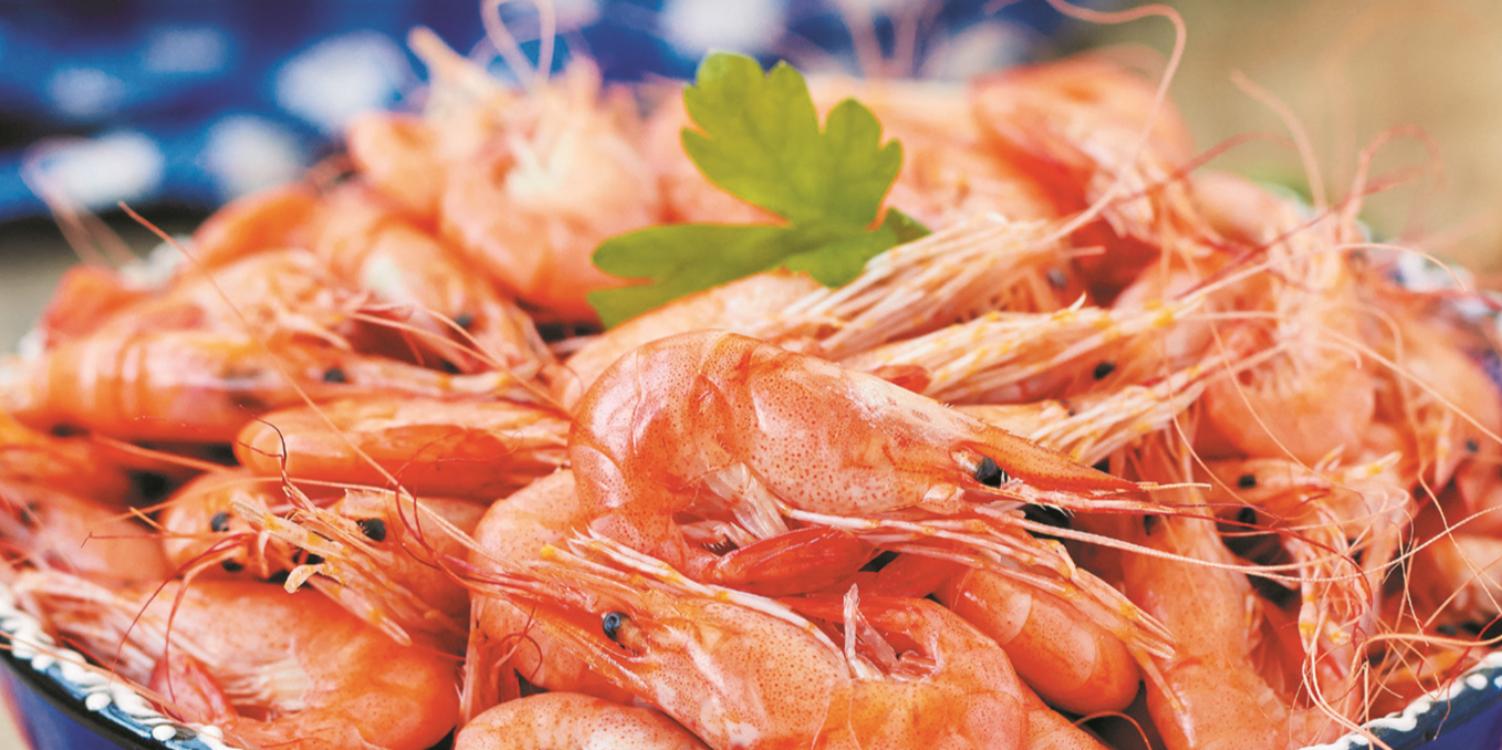 Receita de camarão cozido: para entrar com o pé direito na ceia de Natal!