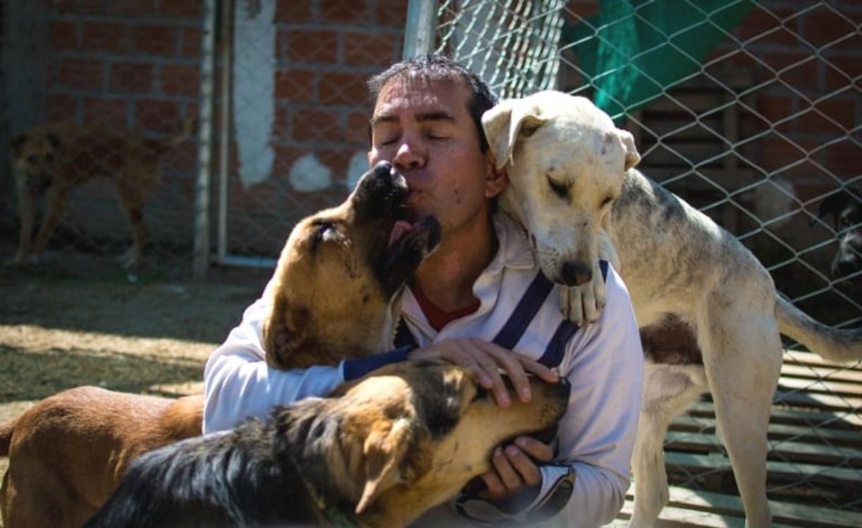 Engenheiro da Bolívia troca carreira promissora pela paixão de cuidar de cães abandonados!
